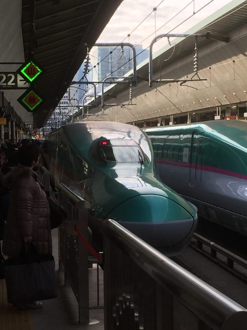 東京駅に停車中のE5系はやぶさ号